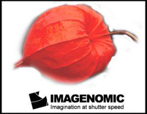 Imagenomic Portraiture 3.5.4 Crack + Key Latest version 2021 Download